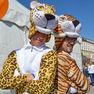 День тигра  во Владивостоке